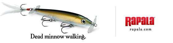 Dead Minnow Walking.